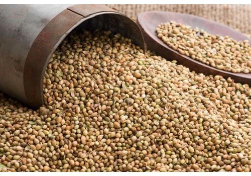Coriander - Seeds