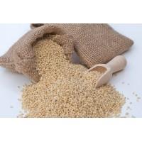 Proso Millet (Baragu, Panivaragu), 500 gms