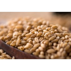 Wheat - Whole, 1 KG