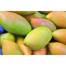 Mango - Totapuri - (Chemical Free) - Raw Mango
