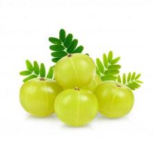 Fresh Amla (ಬೆಟ್ಟದ ನೆಲ್ಲಿಕಾಯಿ)