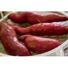 Fresh Sweet Potato ( ಸಿಹಿ ಗೆಣಸು) - Organically Grown